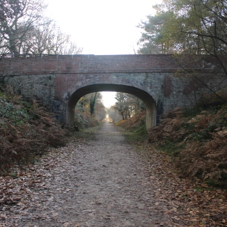 Disused Railway Line - New Forest